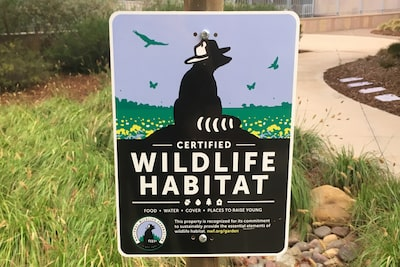 Image of Sony San Diego Achieved Wildlife Habitat Certification in San Diego